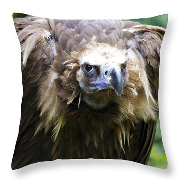 Monk Vulture 3 Throw Pillow