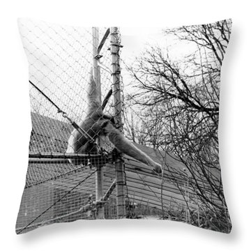 Monkey Grab  Throw Pillow