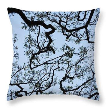 Monkey Pod Tree Patterns Throw Pillow
