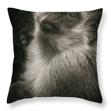 Monkey Portrait Throw Pillow