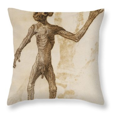 Monkey Standing, Anterior View Throw Pillow by George Stubbs