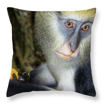 Monkey With His Mango Throw Pillow
