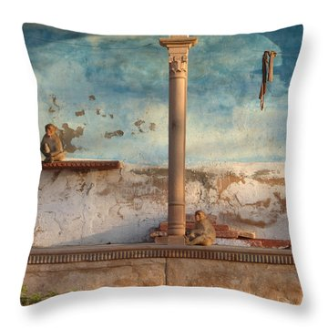 Throw Pillow featuring the photograph Monkeys At Sunset by Jean luc Comperat