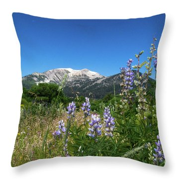 Mammoth Meadow   Throw Pillow
