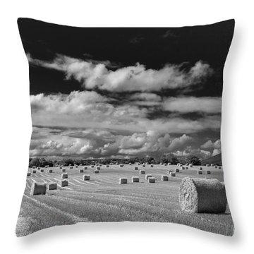 Mono Straw Bales Throw Pillow