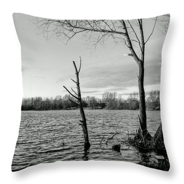 #monochrome #bnw #nokia #lumia Throw Pillow