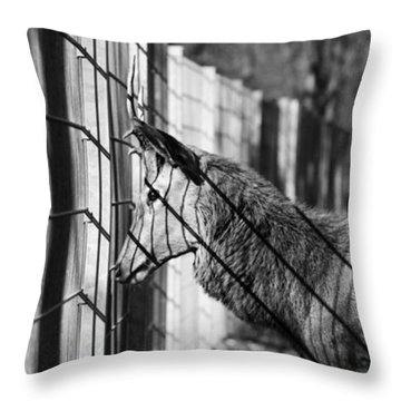 #monochrome #canon #cage #blackandwhite Throw Pillow