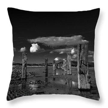 Monochrome Groynes Throw Pillow