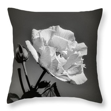 Throw Pillow featuring the photograph Monochrome Rose Of Sharon by Elaine Teague