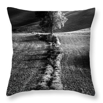 Monochrome Valley Throw Pillow