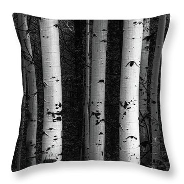 Throw Pillow featuring the photograph Monochrome Wilderness Wonders by James BO Insogna
