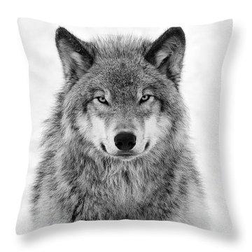 Monotone Timber Wolf  Throw Pillow