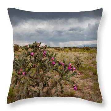 Monsoon Season Throw Pillow by Carolyn Dalessandro