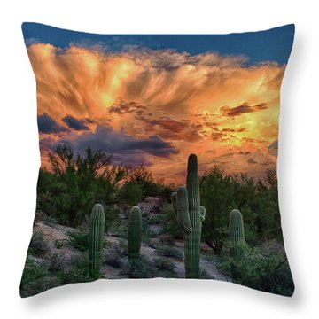Monsoon Sunset Throw Pillow