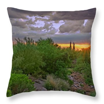 Throw Pillow featuring the photograph Monsoon Sunset H56 by Mark Myhaver