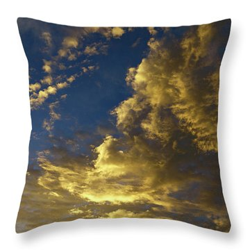 Monsoon Warmth Throw Pillow