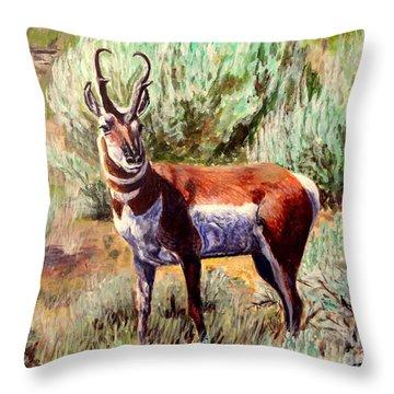 Montana Antelope Buck  Throw Pillow