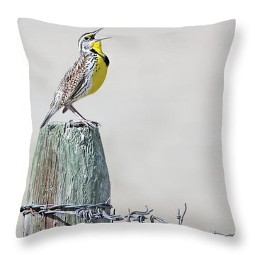 Throw Pillow featuring the photograph Montana Meadowlark's Spring Song by Jennie Marie Schell