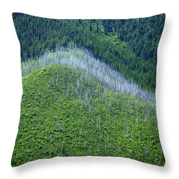 Montana Mountain Vista #4 Throw Pillow