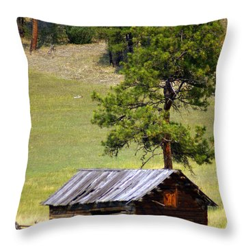 Montana Ranch 2 Throw Pillow by Marty Koch