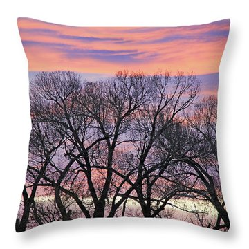 Throw Pillow featuring the photograph Montana Sunrise Tree Silhouette by Jennie Marie Schell