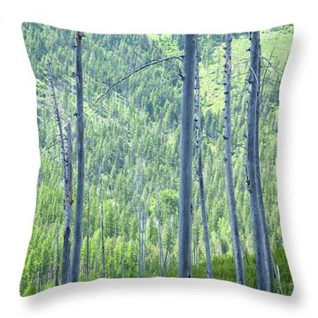 Montana Trees Throw Pillow