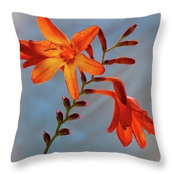 Montbretia 1 Throw Pillow