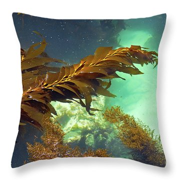 Monterey Bay Seaweed Throw Pillow