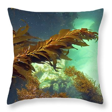 Monterey Bay Seaweed Throw Pillow