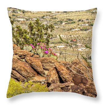 Montezuma Rd Cliff Side Flower Garden Throw Pillow