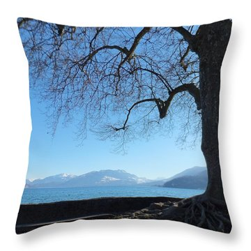 Throw Pillow featuring the photograph Monts Et Ramifications by Marc Philippe Joly