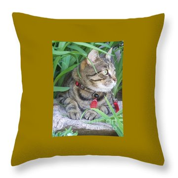 Throw Pillow featuring the photograph Monty In The Garden by Jolanta Anna Karolska