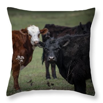 Moo Throw Pillow