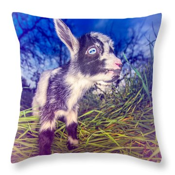 Moo Cow Love Grass Throw Pillow