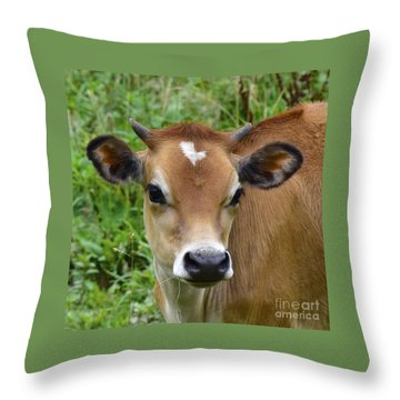 Fairytale Cow Throw Pillow