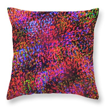 Throw Pillow featuring the photograph Moodscape 3 by Sean Griffin