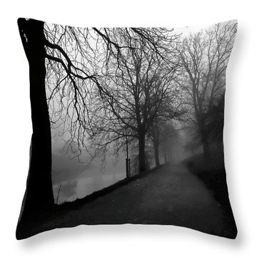 Moody And Misty Morning Throw Pillow