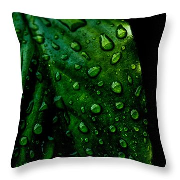 Moody Raindrops Throw Pillow by Parker Cunningham