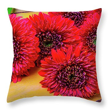 Moody Red Gerbera Dasies Throw Pillow by Garry Gay