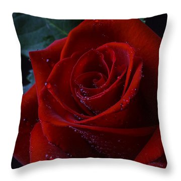 Moody Red Rose Throw Pillow