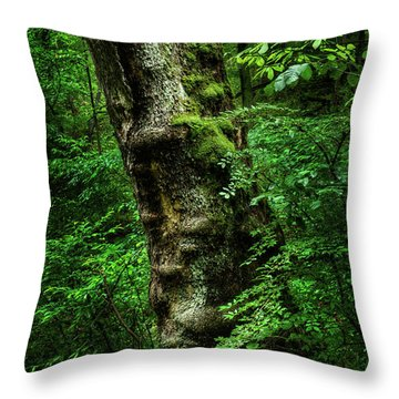 Throw Pillow featuring the photograph Moody Tree In Forest by Dennis Dame