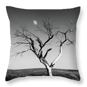 Moon And Memory At Bosque Del Apache N M Throw Pillow