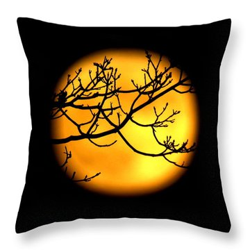 Moon In The Trees Throw Pillow