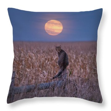 Moon Kitty  Throw Pillow