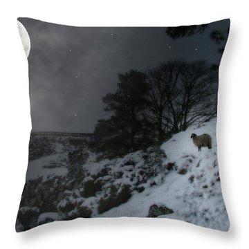 Moon Land Throw Pillow