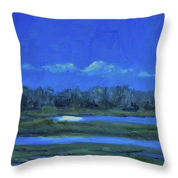 Throw Pillow featuring the painting Moon Light And Mud Puddles by Billie Colson