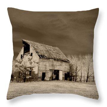 Moon Lit Sepia Throw Pillow