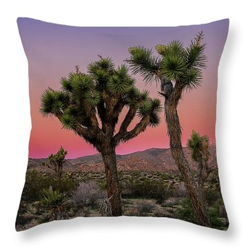 Moon Over Joshua Tree Throw Pillow
