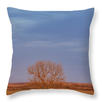 Moon Over Tree Throw Pillow