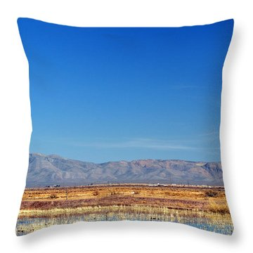 Throw Pillow featuring the photograph Moon Rising by Barbara Manis